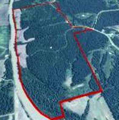 Over 300 Acres on Young's Lodge